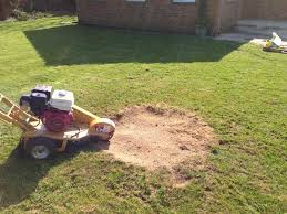 Stump Grinding Near me